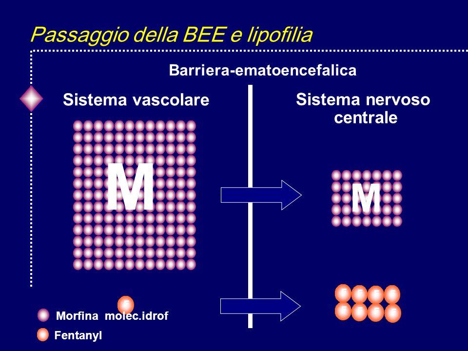 Passaggio della BEE e lipofilia