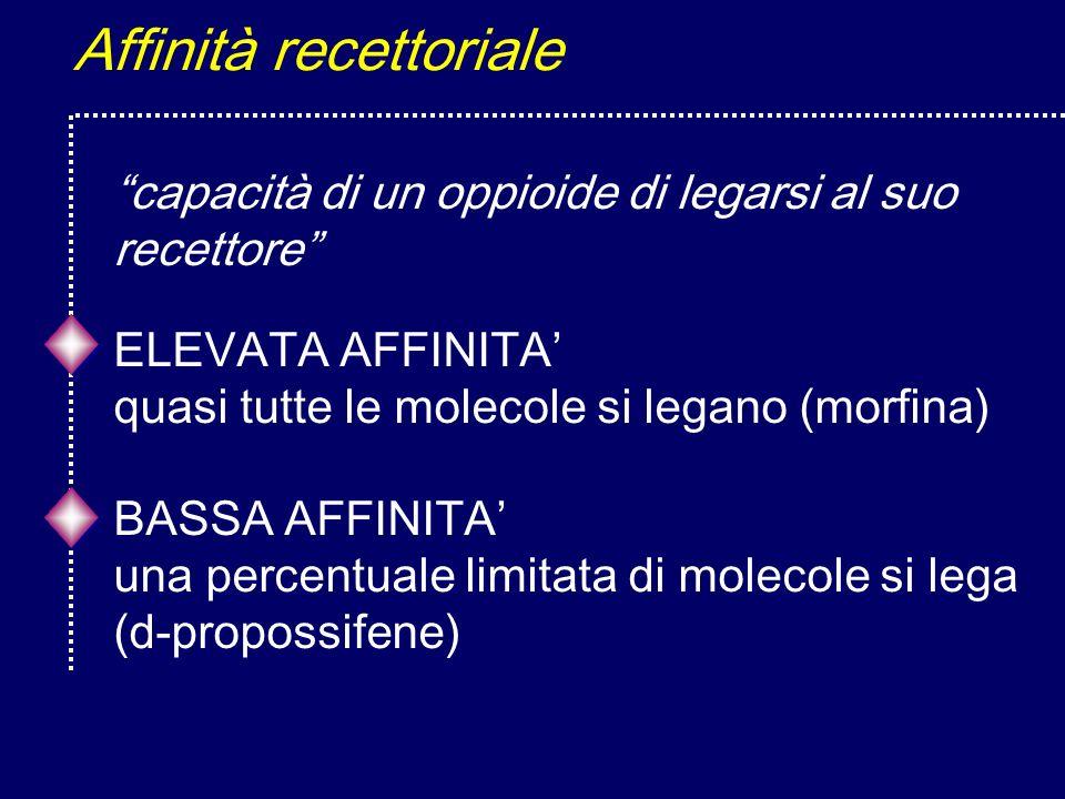Affinità recettoriale