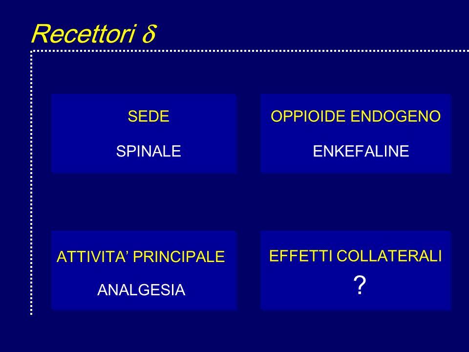 Recettori  SEDE SPINALE OPPIOIDE ENDOGENO ENKEFALINE