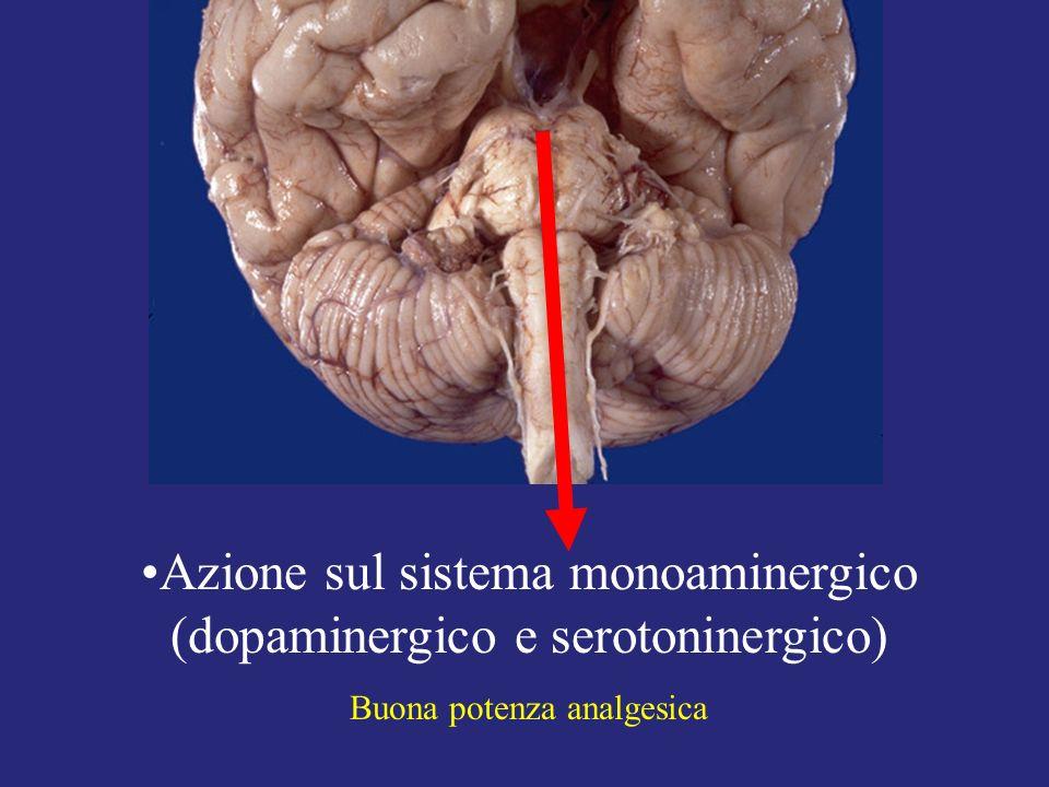 Azione sul sistema monoaminergico (dopaminergico e serotoninergico)