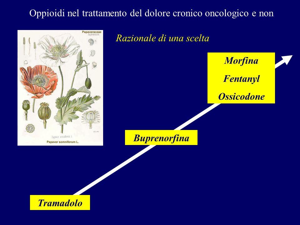 Morfina Fentanyl Ossicodone Buprenorfina Tramadolo