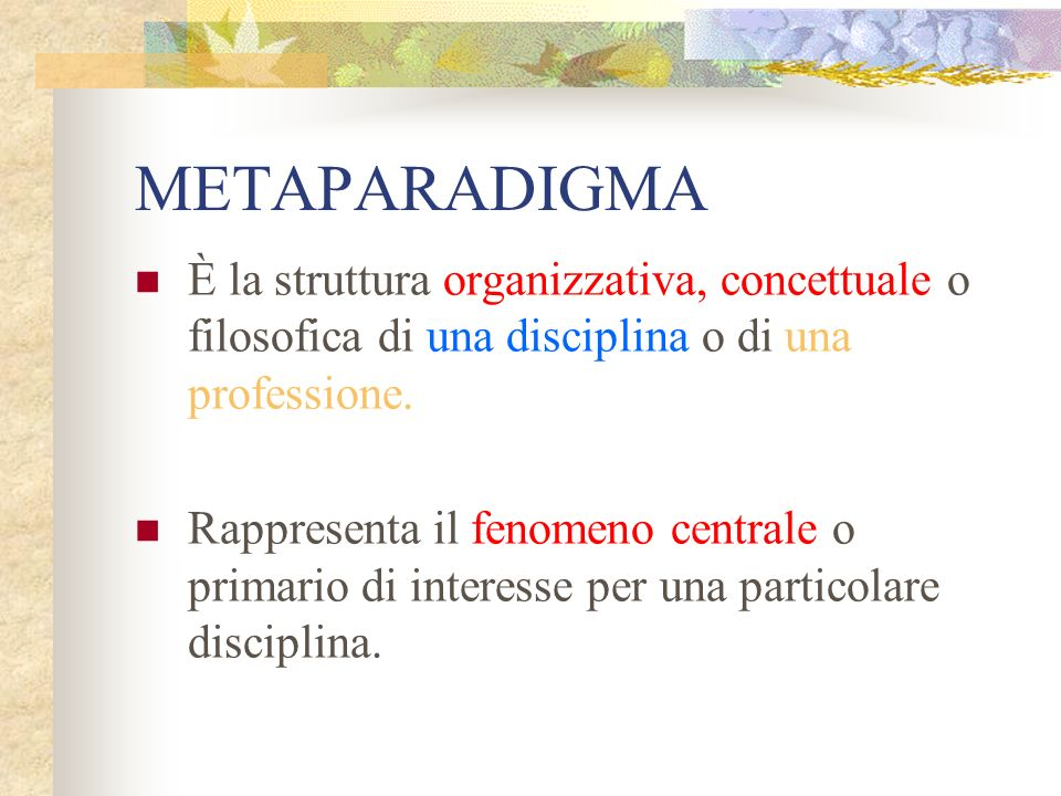 METAPARADIGMA È la struttura organizzativa, concettuale o filosofica di una disciplina o di una professione.