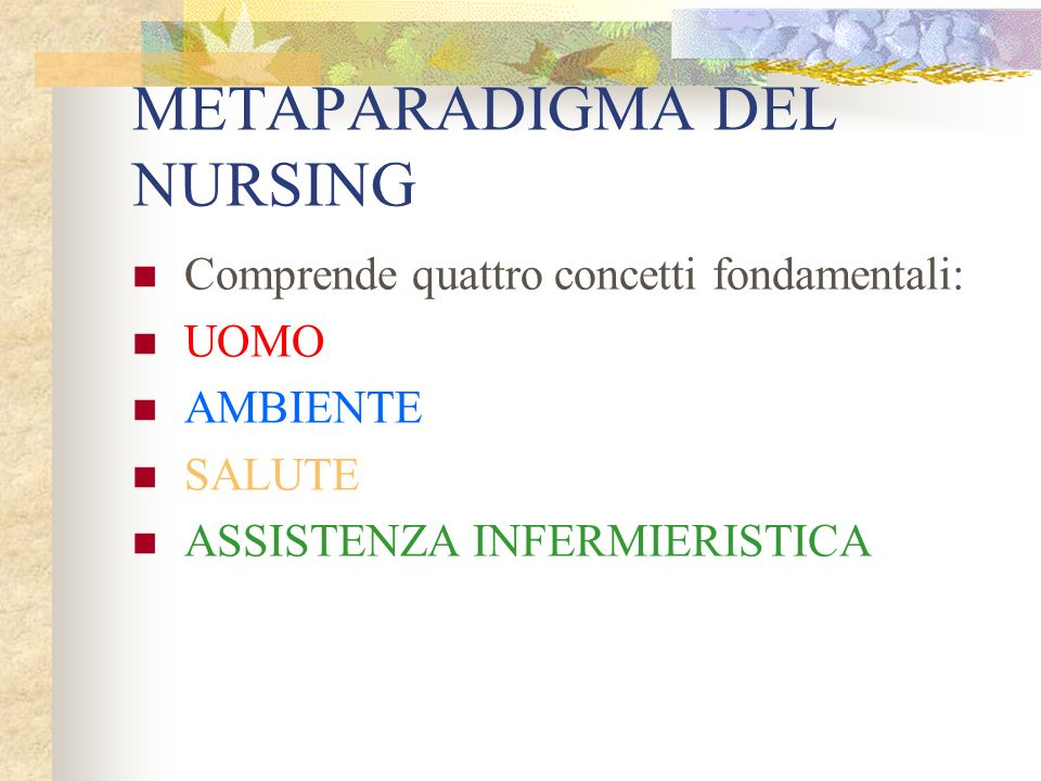 METAPARADIGMA DEL NURSING