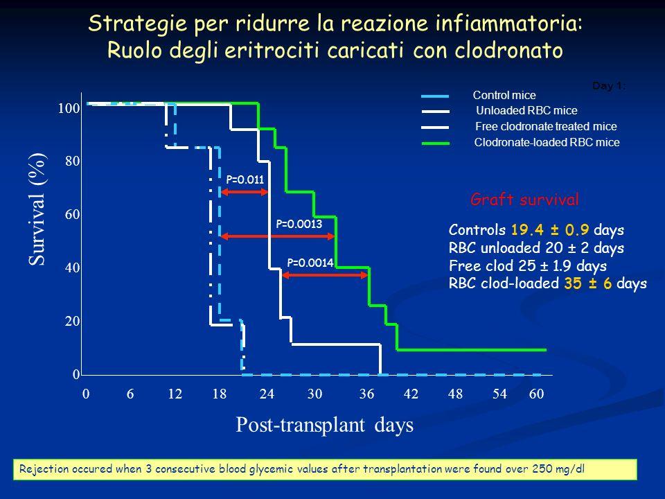 Strategie per ridurre la reazione infiammatoria: