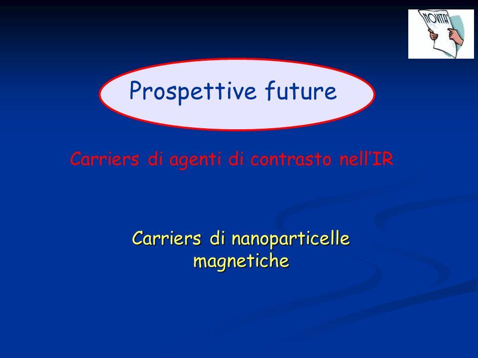 Carriers di nanoparticelle magnetiche