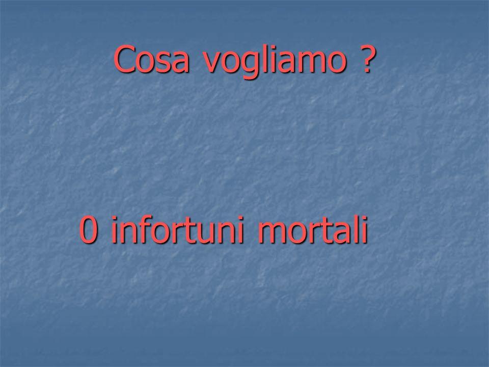 Cosa vogliamo 0 infortuni mortali