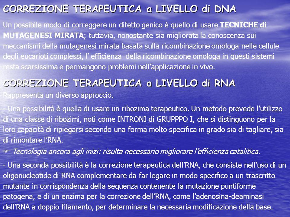 CORREZIONE TERAPEUTICA a LIVELLO di DNA