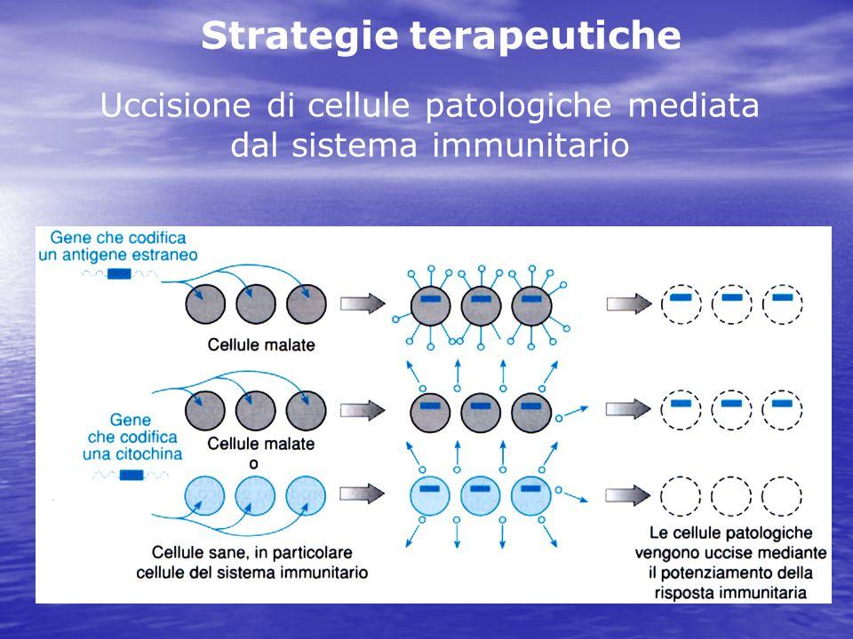 Uccisione di cellule patologiche mediata dal sistema immunitario