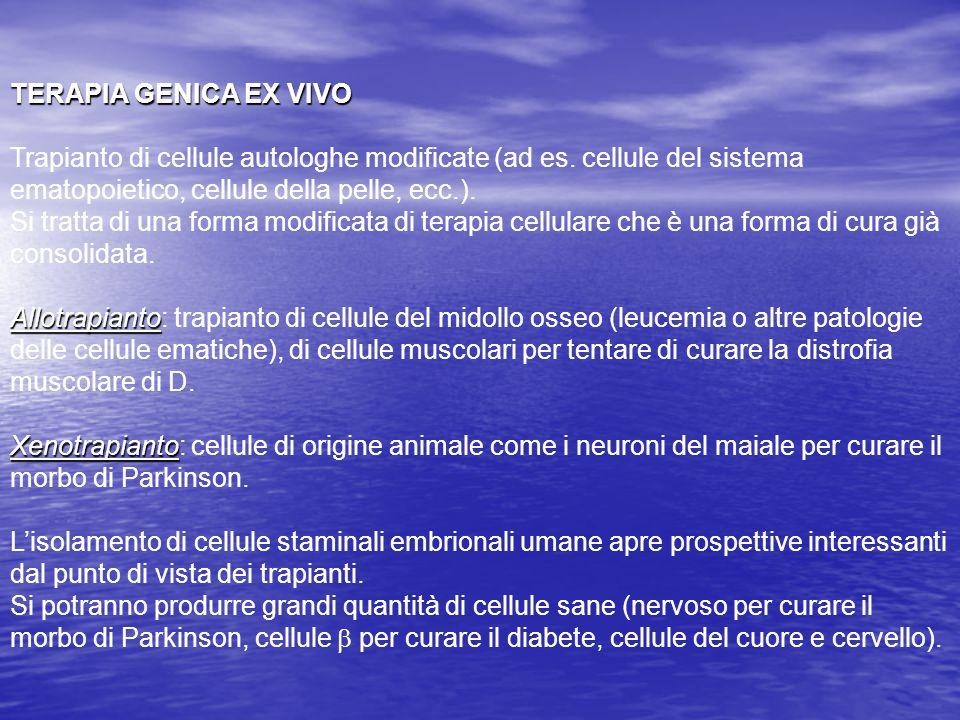 TERAPIA GENICA EX VIVO Trapianto di cellule autologhe modificate (ad es. cellule del sistema ematopoietico, cellule della pelle, ecc.).