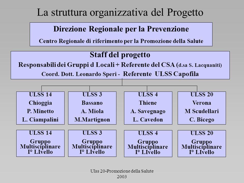 La struttura organizzativa del Progetto