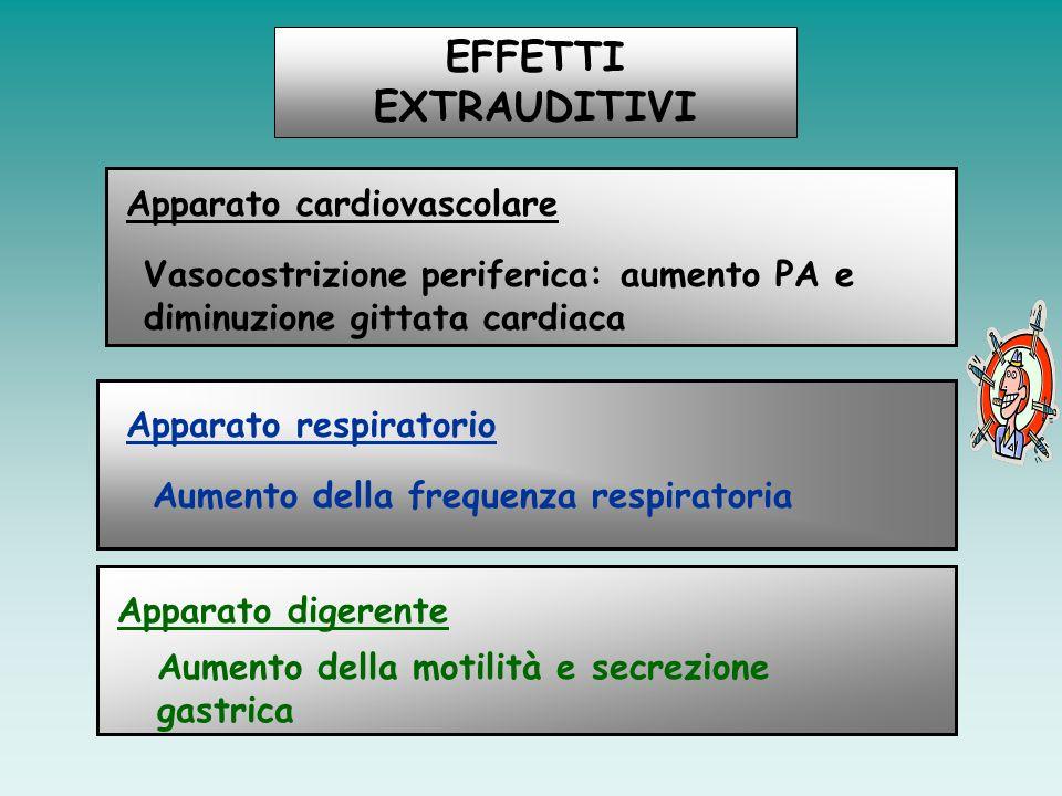 EFFETTI EXTRAUDITIVI Apparato cardiovascolare