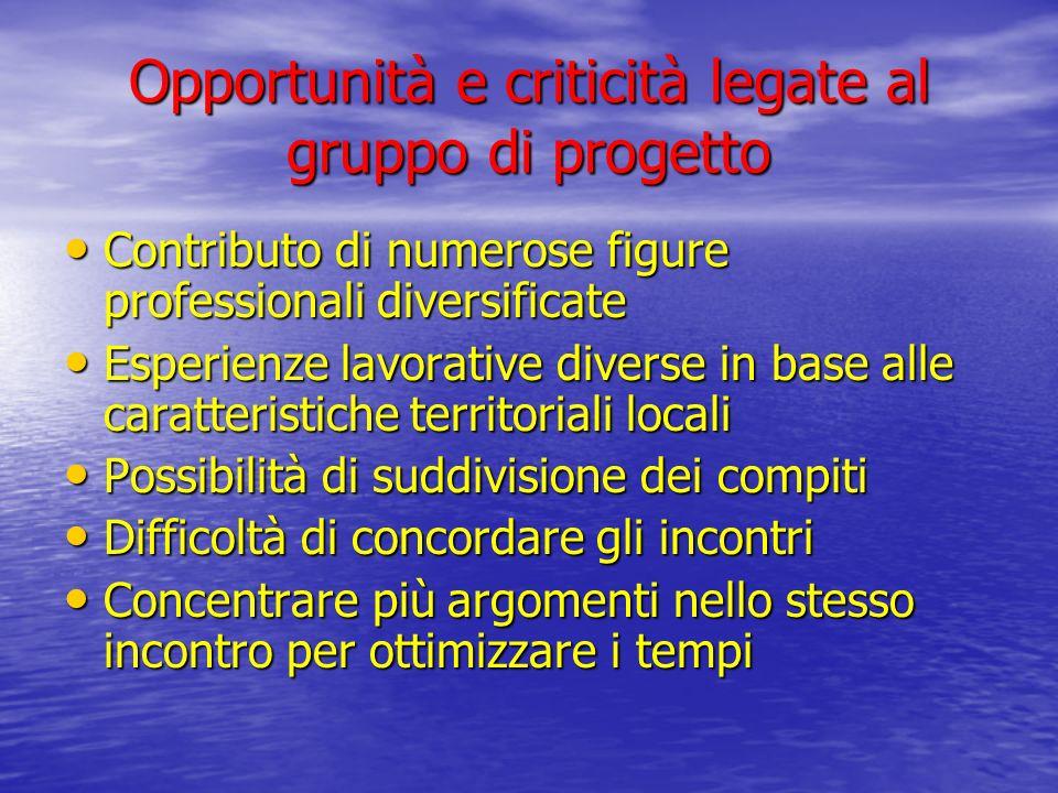 Opportunità e criticità legate al gruppo di progetto