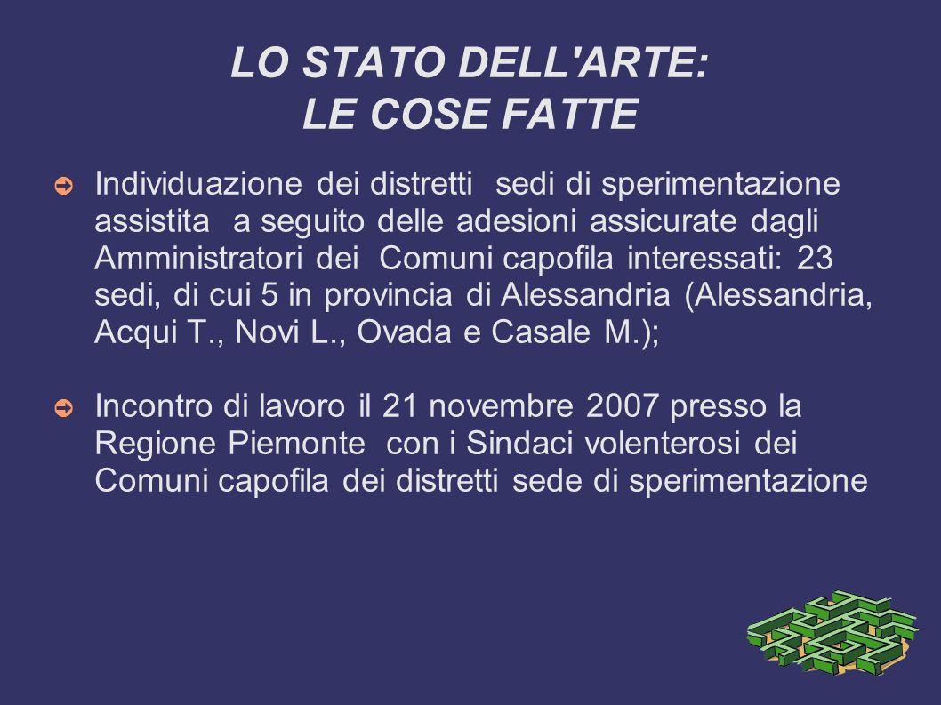 LO STATO DELL ARTE: LE COSE FATTE