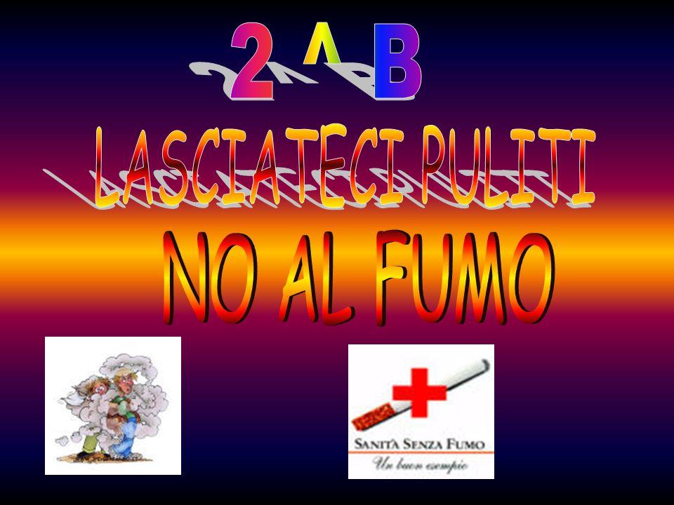 2 ^ B LASCIATECI PULITI NO AL FUMO