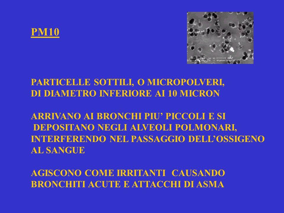 PM10 PARTICELLE SOTTILI, O MICROPOLVERI,