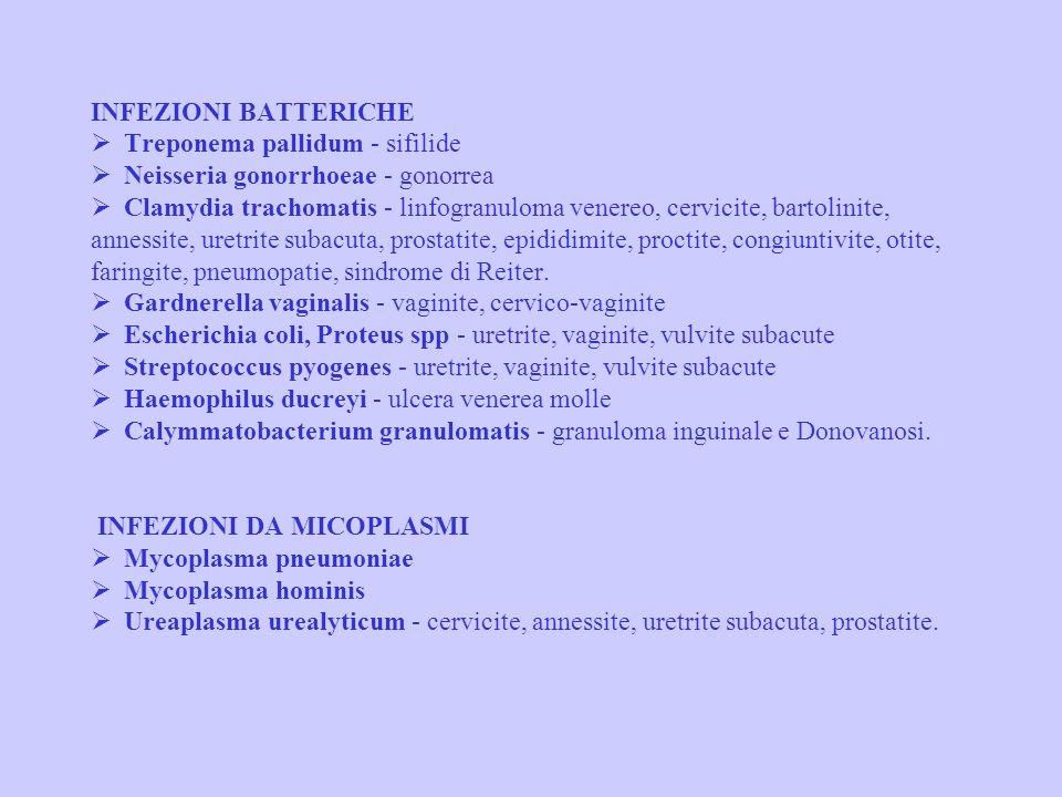 CLASSIFICAZIONE DELLE MST INFEZIONI BATTERICHE Ø Treponema pallidum - sifilide Ø Neisseria gonorrhoeae - gonorrea Ø Clamydia trachomatis - linfogranuloma venereo, cervicite, bartolinite, annessite, uretrite subacuta, prostatite, epididimite, proctite, congiuntivite, otite, faringite, pneumopatie, sindrome di Reiter.