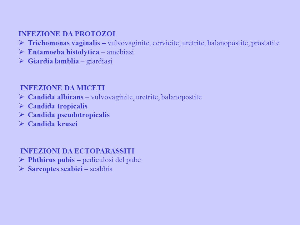 INFEZIONE DA PROTOZOI Ø Trichomonas vaginalis – vulvovaginite, cervicite, uretrite, balanopostite, prostatite Ø Entamoeba histolytica – amebiasi Ø Giardia lamblia – giardiasi
