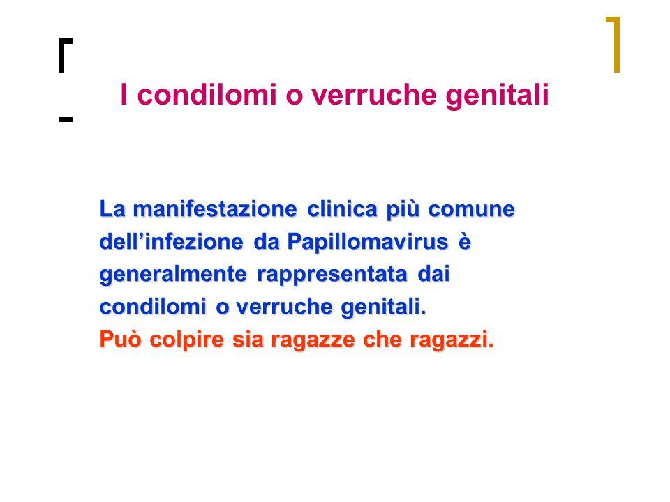 I condilomi o verruche genitali