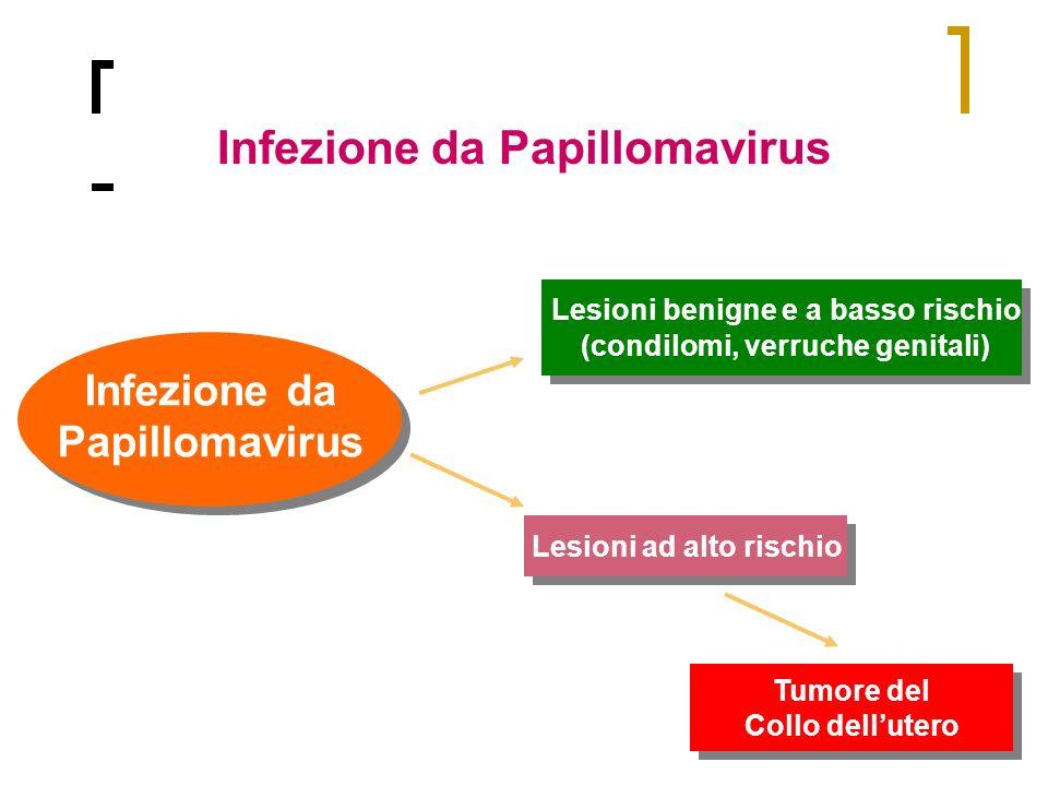 Infezione da Papillomavirus