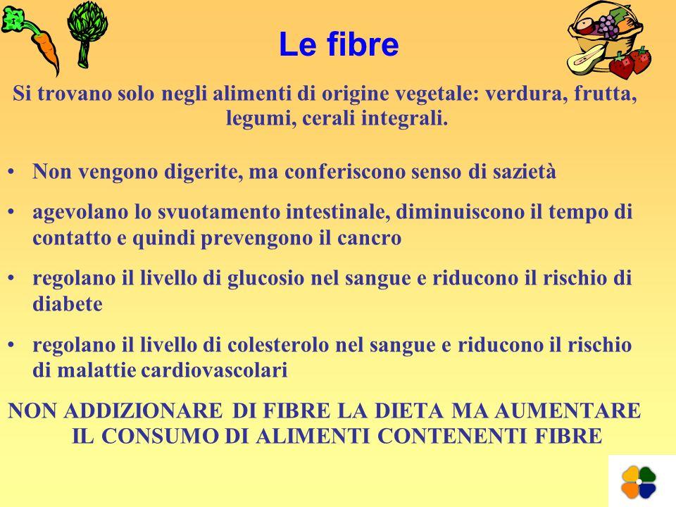 Le fibre Si trovano solo negli alimenti di origine vegetale: verdura, frutta, legumi, cerali integrali.