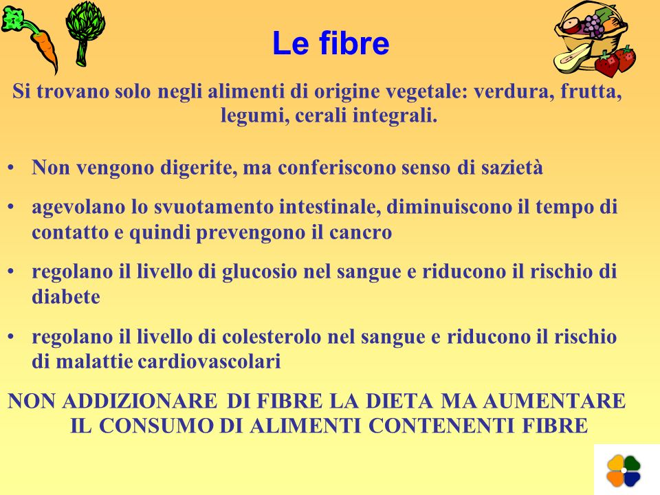 Le fibreSi trovano solo negli alimenti di origine vegetale: verdura, frutta, legumi, cerali integrali.