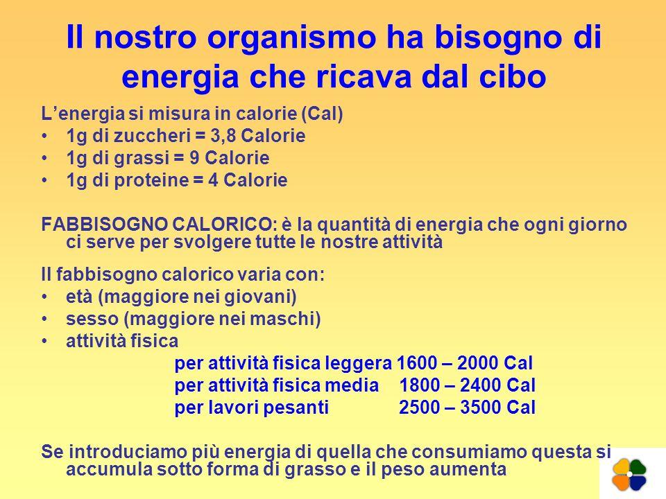 Il nostro organismo ha bisogno di energia che ricava dal cibo