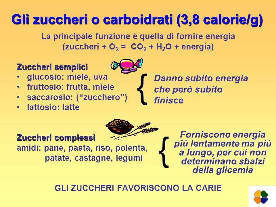 Gli zuccheri o carboidrati (3,8 calorie/g)