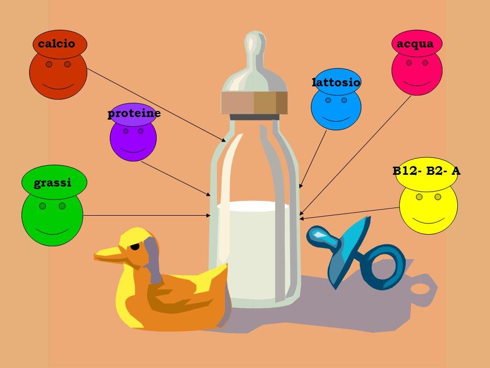 calcio acqua lattosio proteine B12- B2- A grassi grassi