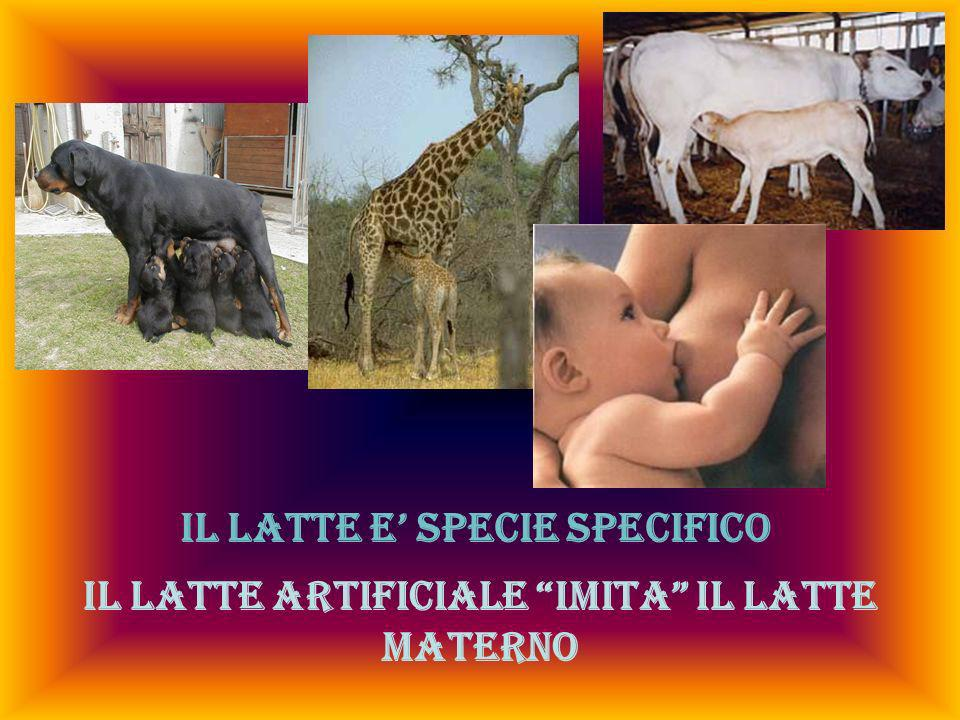 IL LATTE E' SPECIE SPECIFICO