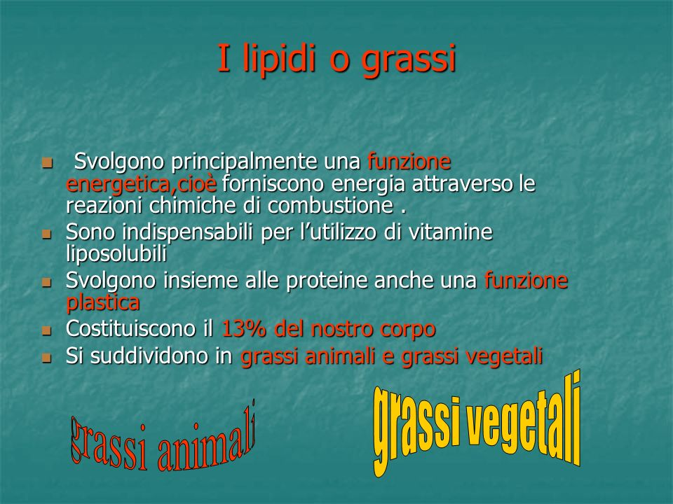 I lipidi o grassi grassi vegetali grassi animali