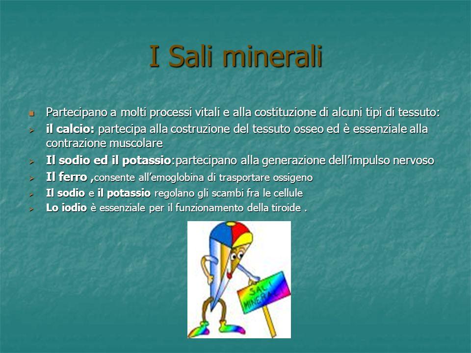 I Sali minerali Partecipano a molti processi vitali e alla costituzione di alcuni tipi di tessuto: