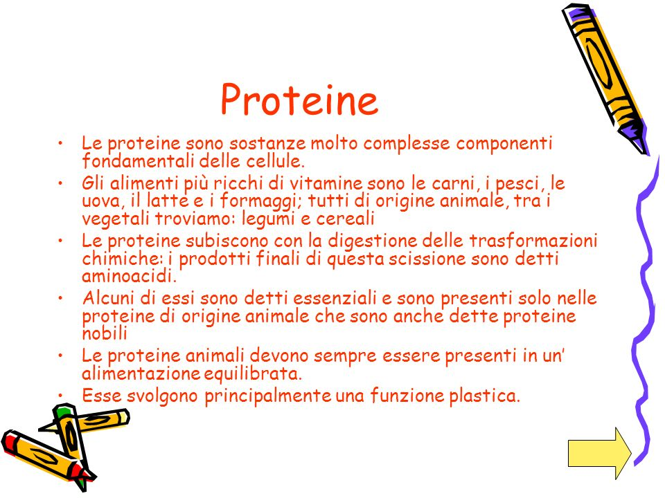 Proteine Le proteine sono sostanze molto complesse componenti fondamentali delle cellule.