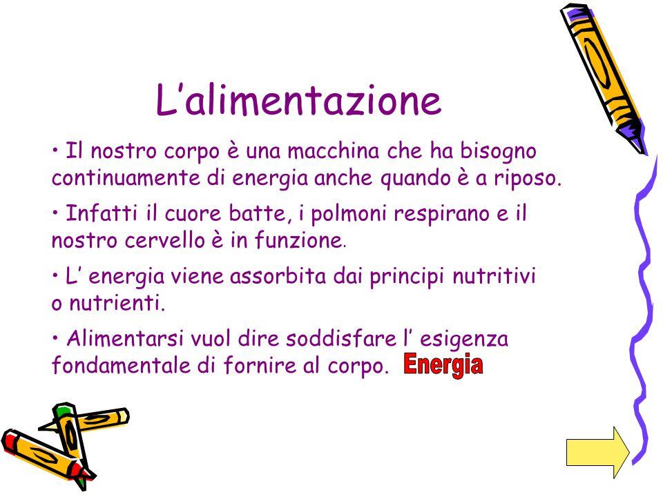 L'alimentazione Il nostro corpo è una macchina che ha bisogno continuamente di energia anche quando è a riposo.