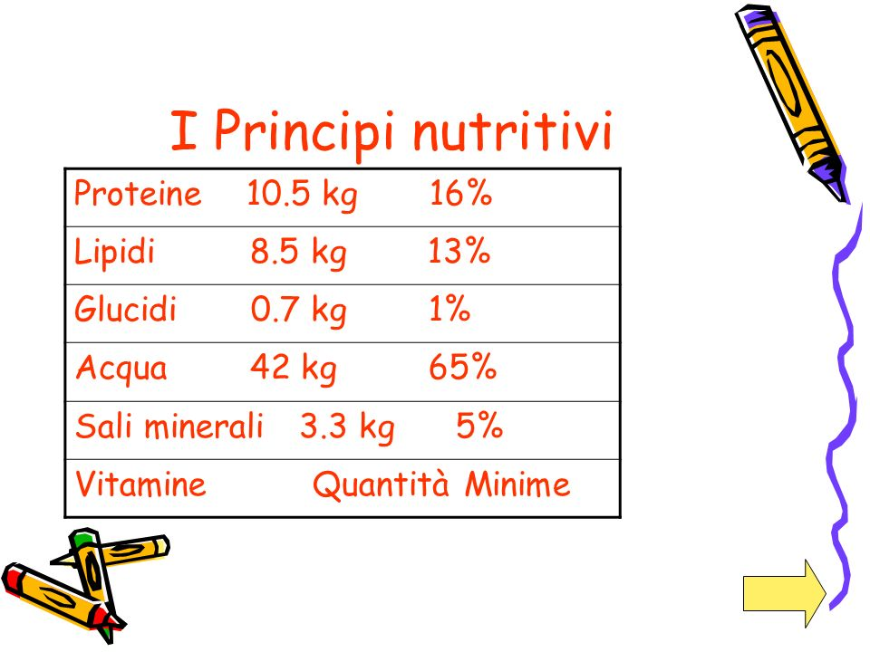 I Principi nutritivi Proteine 10.5 kg 16% Lipidi 8.5 kg 13%