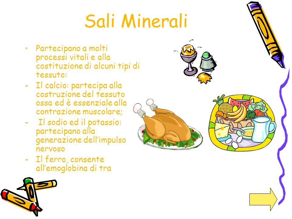 Sali Minerali Partecipano a molti processi vitali e alla costituzione di alcuni tipi di tessuto:
