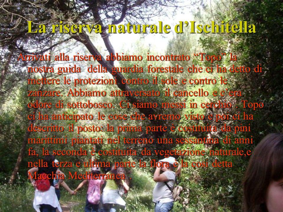 La riserva naturale d'Ischitella