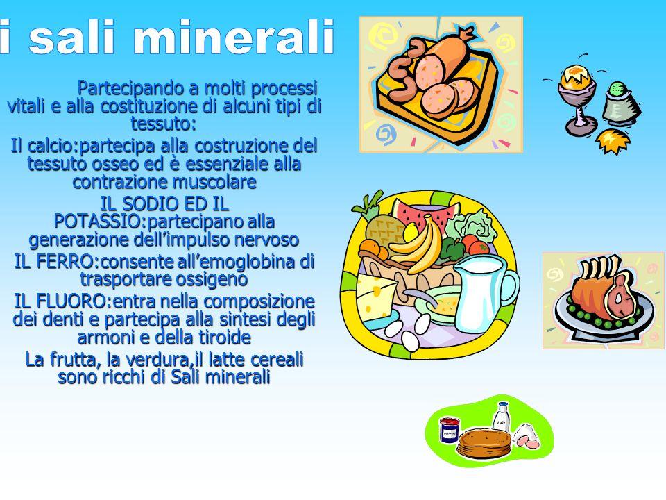 i sali minerali Partecipando a molti processi vitali e alla costituzione di alcuni tipi di tessuto: