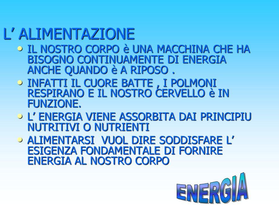 L' ALIMENTAZIONE ENERGIA