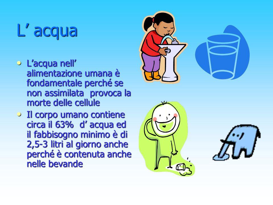 L' acqua L'acqua nell' alimentazione umana è fondamentale perché se non assimilata provoca la morte delle cellule.