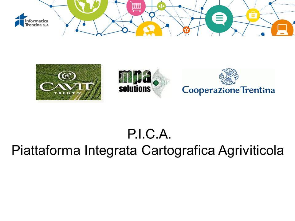 Piattaforma Integrata Cartografica Agriviticola