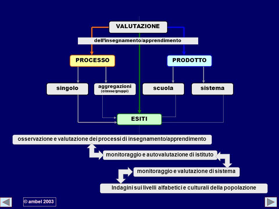 osservazione e valutazione dei processi di insegnamento/apprendimento