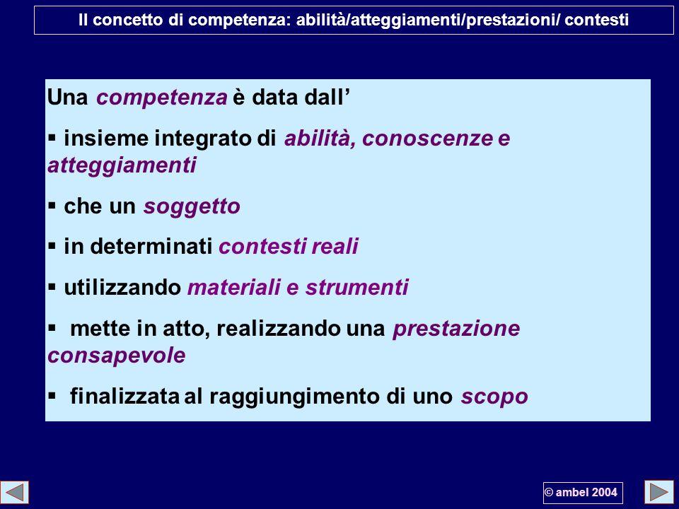 Il concetto di competenza: abilità/atteggiamenti/prestazioni/ contesti