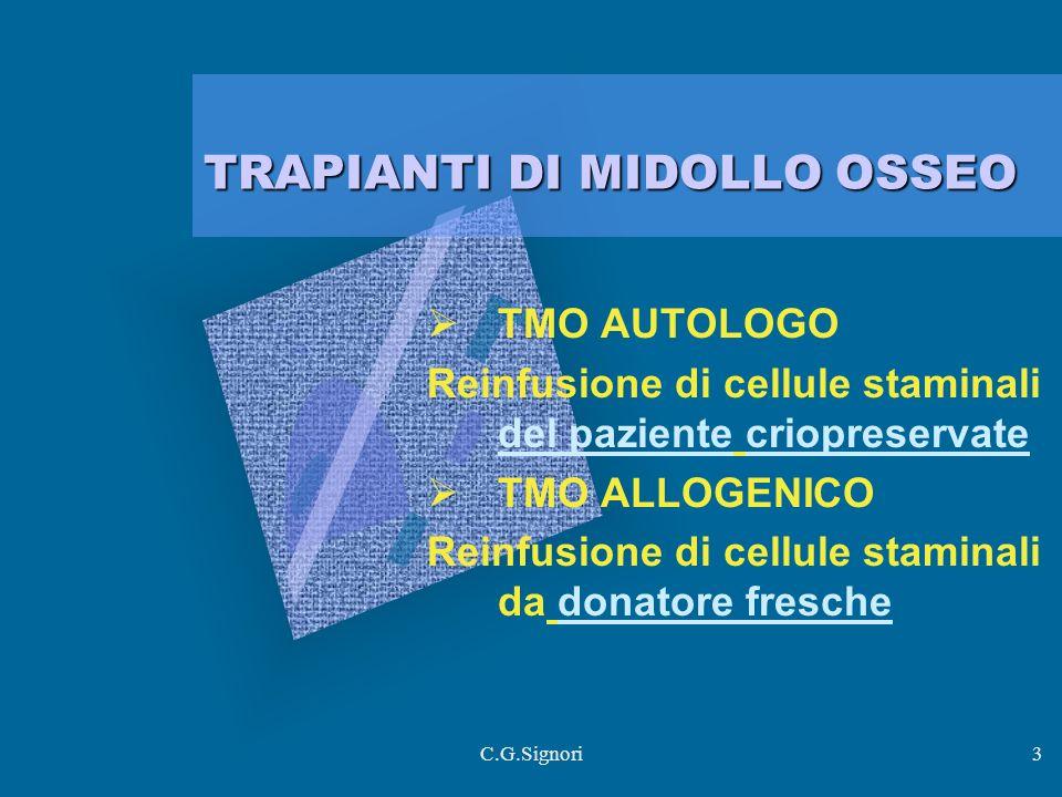 TRAPIANTI DI MIDOLLO OSSEO