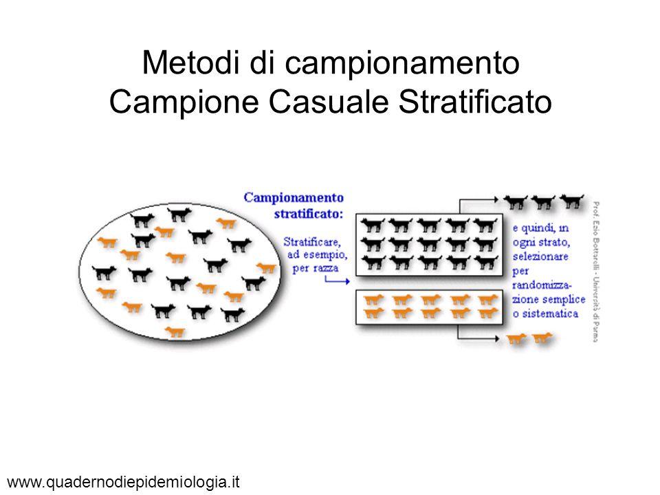 Metodi di campionamento Campione Casuale Stratificato