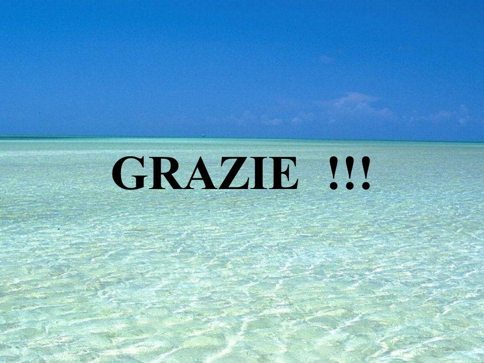 GRAZIE !!!