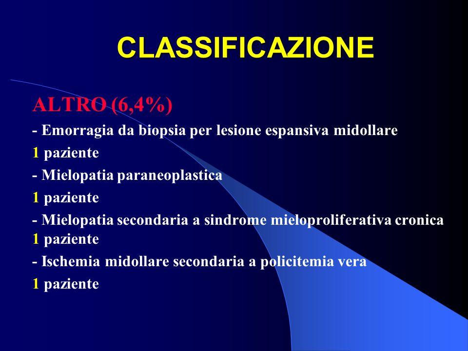 CLASSIFICAZIONE ALTRO (6,4%)