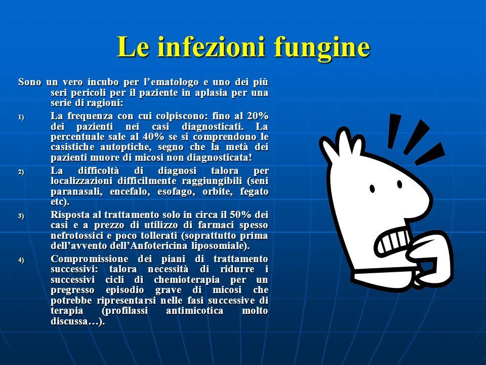 Le infezioni fungine Sono un vero incubo per l'ematologo e uno dei più seri pericoli per il paziente in aplasia per una serie di ragioni: