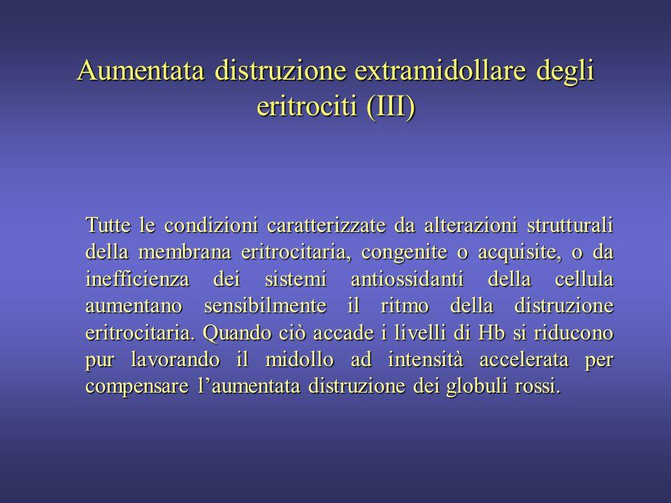 Aumentata distruzione extramidollare degli eritrociti (III)