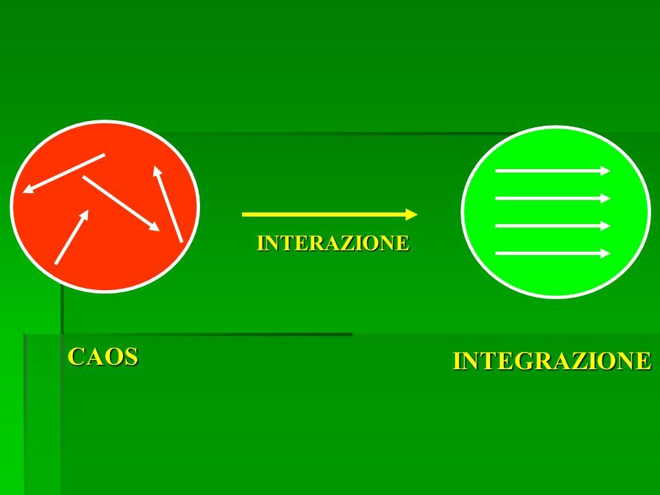 INTERAZIONE CAOS INTEGRAZIONE