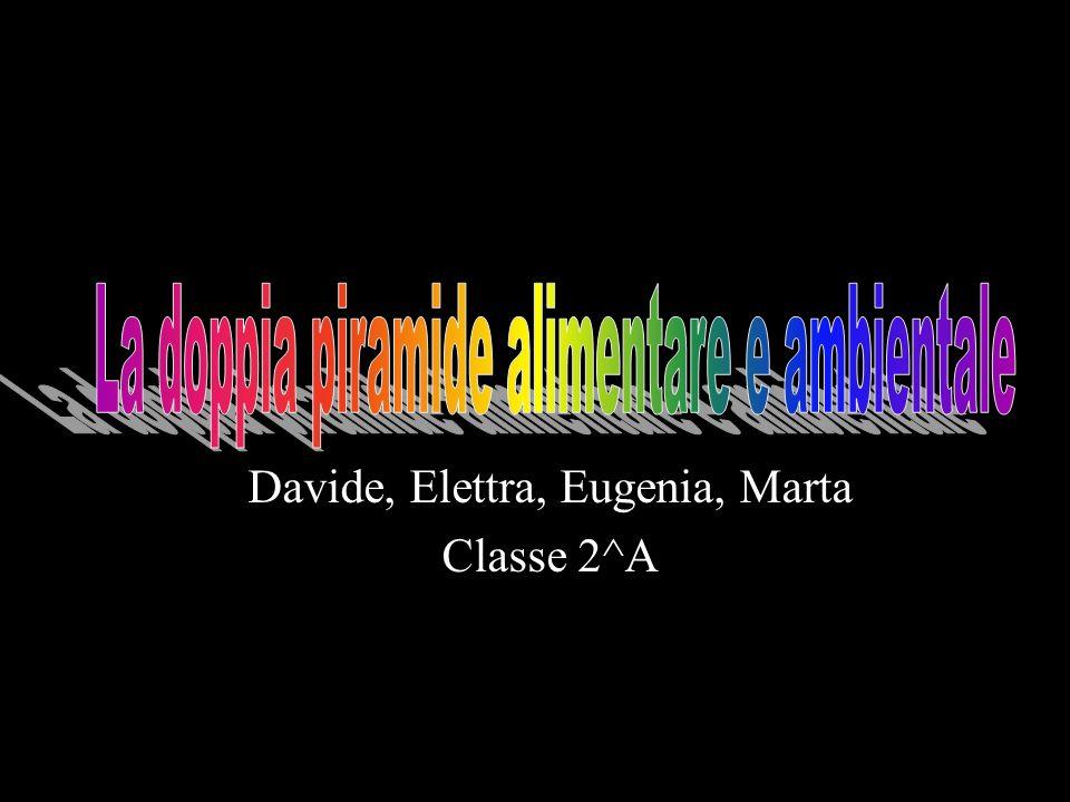 Davide, Elettra, Eugenia, Marta Classe 2^A